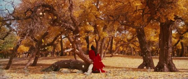 Hero-cinefilo-pigro-zhang-yimou-Ziyi-Zhang